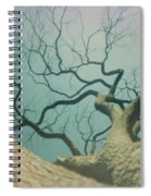 A Naked Tree Spiral Notebook