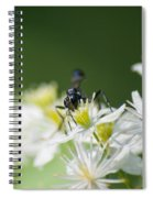 A Nectar Drink For This Black Mud Dauber   Spiral Notebook