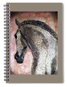 A New Dawn Spiral Notebook