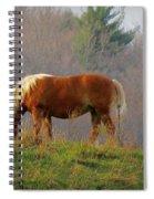 A November Horse Spiral Notebook