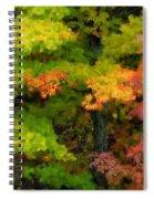 A Painting Adirondack Autumn Spiral Notebook