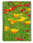 A Painting Tuscan Poppies Spiral Notebook