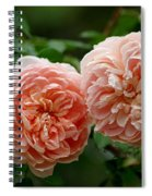 A Pair Of Colette Roses Spiral Notebook