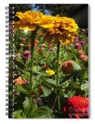 A Pair Of Yellow Zinnias 01 Spiral Notebook