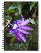 A Passion For Flowers Db Spiral Notebook