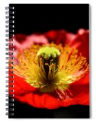 A Passion For Life Spiral Notebook