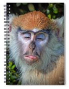 A Patas Baby Monkey Behaving Badly Spiral Notebook