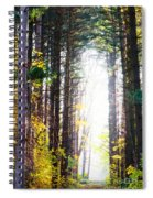 A Path In The Pines Spiral Notebook