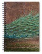 A Peacock Spiral Notebook