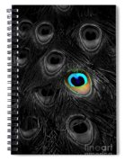 A Peacock Feather Spiral Notebook