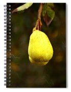 A Pear Tree Spiral Notebook