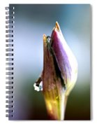 A Pearl In My Mouth - Water Droplets Spiral Notebook