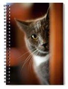 A Peek Spiral Notebook