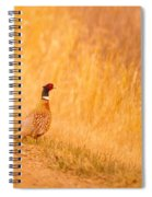 A Pheasant  Spiral Notebook