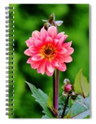 A Pink Flower Spiral Notebook