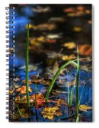 A Place Called Home Spiral Notebook
