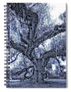 A Place For Dying Blue Spiral Notebook