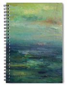 A Place For Peace Spiral Notebook