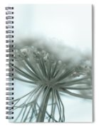 A Place For Us To Dream Spiral Notebook