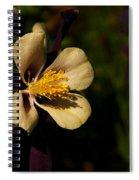 A Pretty Flower In The Sun Spiral Notebook