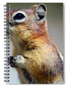 A Profile In Chipmunk Spiral Notebook