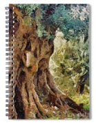 A Really Old Olive Tree Spiral Notebook