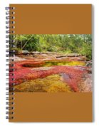 A Red And Yellow River In Colombia Spiral Notebook