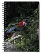 A Red Green And Blue Macaw On A Branch In The Jurong Bird Park Spiral Notebook
