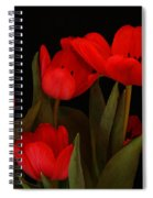 A Red Tulip Day Spiral Notebook