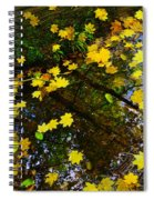 A Reflection Amongst The Leaves Spiral Notebook