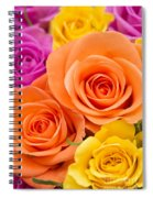 A Riot Of Roses Spiral Notebook