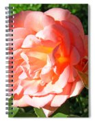A Rose And A Rose Spiral Notebook