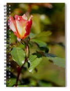 A Rose For You Spiral Notebook