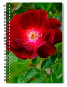 A Rose Is A Rose Spiral Notebook