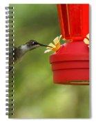 A Ruby-throated Hummingbird Spiral Notebook
