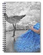 A Sandpiper's Dream Spiral Notebook