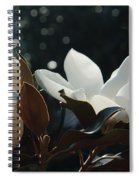 A Sea Of Magnolias Spiral Notebook