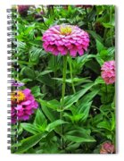 A Sea Of Zinnias 09 Spiral Notebook