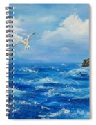 A Seagull's View George's Head Kilkee Co. Clare Spiral Notebook