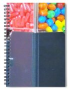 A Second Of Insanity Spiral Notebook