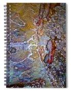 A Secret Beneath The Surface Spiral Notebook