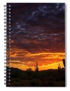 A Sentinel Sunset  Spiral Notebook