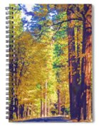 A Shady Drive Through Yosemite Spiral Notebook