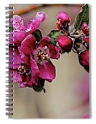 A Sign Of Spring Spiral Notebook