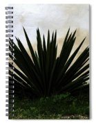 A Simple Yucca Spiral Notebook