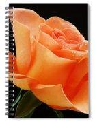 A Single Bloom 1 Spiral Notebook