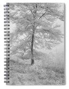 A Single Infrared Beech Tree Spiral Notebook