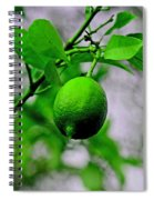A Single Lime Spiral Notebook