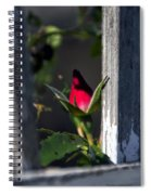 A Single Rosebud Spiral Notebook