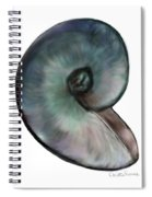 A Single Shell Spiral Notebook